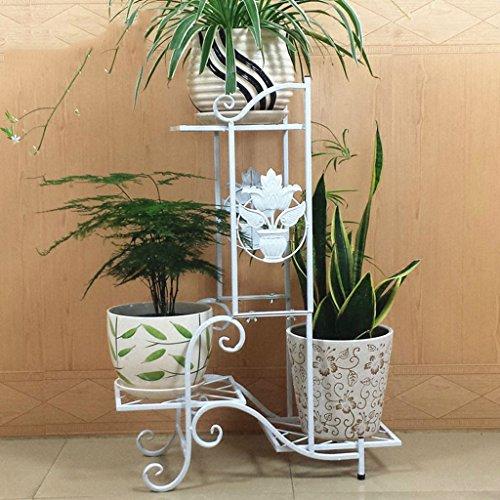 William 337 Porte-fleurs en fer, salon Pot de pot de fleurs Balcon Bonsai Frame Plant Display Stand (Couleur : B, taille : 57 * 25 * 79CM)
