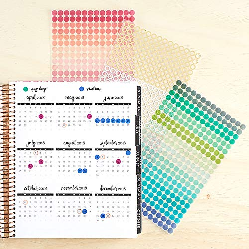 Erin Condren Designer Sticker Pack - Colorful Circles Stickers 3 Pack. Contains Decorative, Fun and Cute Stickers for Customizing Planners, Notebooks, and More