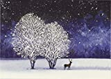 Starry Night Deluxe Boxed Holiday Cards (Christmas Cards, Greeting Cards)