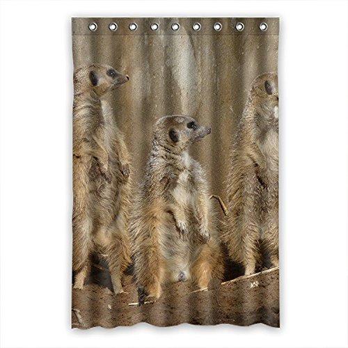 DOUBEE Badezimmer Erdmännchen Meerkats Wasserdichtes Duschvorhänge SHOWER CURTAIN 120cm x 183cm