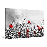 Startonight Cuadro Moderno en Lienzo - Blanco y Negro con Amapolas Rojas - Pintura Flores para Salon Decoración 60 x 90 cm