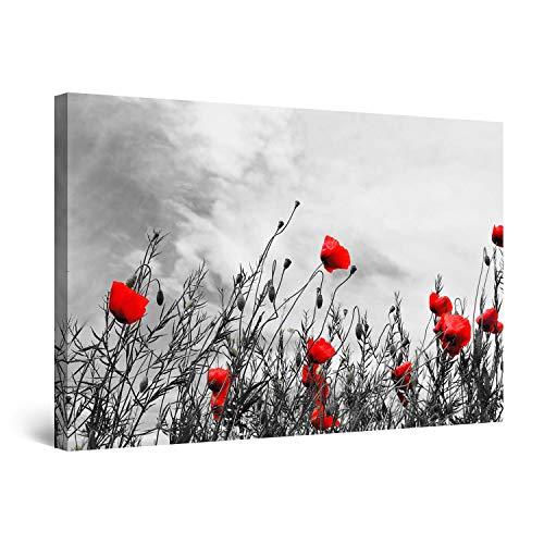 StartonightImpressionsurToile Noir et Blanc avec Coquelicots Rouges - Tableau Fleurs - Decoration Murale Salon Moderne - Image sur Toile - 60x90cm