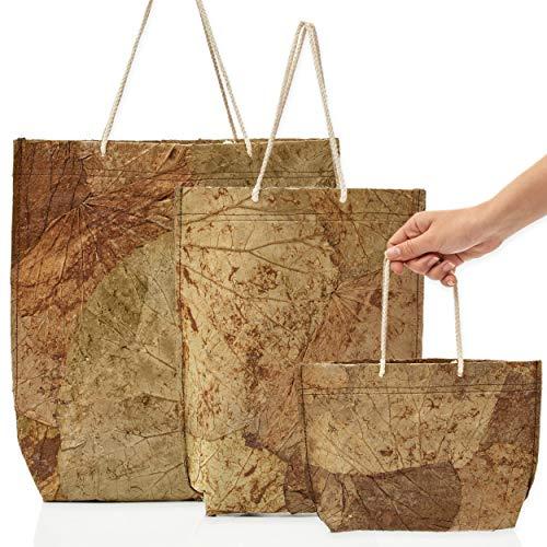 Lotus Eco Tragetasche Einkauf (3er Pack) - 100% Natur Einkaufstasche faltbar I Geschenke Shopping Bag für Einkauf, Strand, Freizeit, Geschenktüten