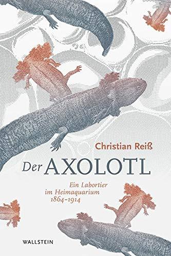 Der Axolotl: Ein Labortier im Heimaquarium 1864 -1914
