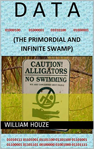 DATA: (THE PRIMORDIAL AND INFINITE SWAMP)