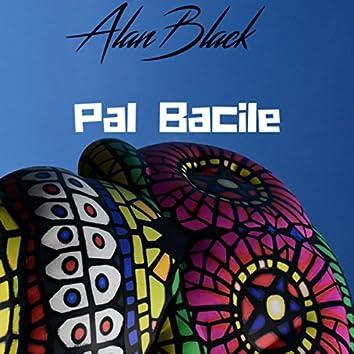 Pal Bacile