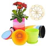 Colmanda Coloridas Macetas, 10 Coloridas Maceta de Flores con Etiquetas de Plantas, Macetas de Jardín, Macetas Moderno Macetas de Plantas de Interior y de Exterior con Palet para Oficina u Hogar