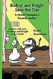 Bishop And Knight Save The Day: A World Champion's Favorite Studies-Tkachenko, Sergei