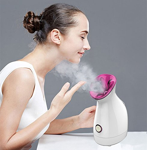 Nano Ionic Facial Steamer, FLYMEI Face Steamer for Girl Facial Humidifier for Female Warm Mist Moisturizing Cleansing Pores/Blackhead Home SPA Steamer