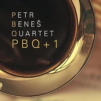 PBQ+1