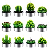 Siveit 12 Pack Cactus Tealight Candles, Handmade Delicate Succulent Cactus Candles Flameless Tea Lights Candle Aromatherapy for Decor Birthday Party Wedding Spa