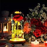 MMTX Regalo del día de Las Madres La Bella y la Bestia Luz Rosa, luz Rosa encantada con 8 Modelos en una cúpula de Vidrio con Control Remoto para Regalo de cumpleaños San Valentín Navidad