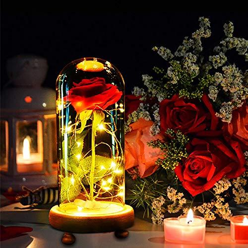 MMTX Festa della Mamma Regalo La Bellezza e la Bestia Rose, Natale Regalo Luce Rosa incantata con 8 Modelli in Vetro per Decorazioni per San Valentine Natale la casa Anniversario di Compleanno