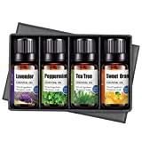 Ätherische Öle Set,Reine Aromatherapie Duftöl Set Essential Oil für Aromatherapie Duftöl/Diffuser-6X10 ml Natürliches & Sicheres Teebaum, Eukalyptus, Lavendel, Zitronengras, Süßorange, Minze