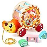 Lewo Nachziehspielzeug Ziehspielzeug mit Formsortierer Holz Lernspielzeug Spielzeug für 1
