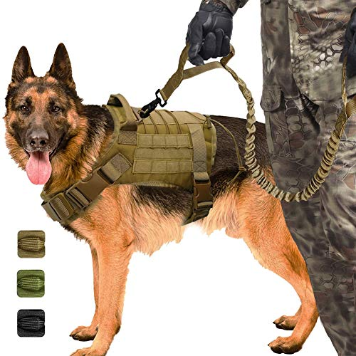 Militärisches Taktisches Hundegeschirr K9 Gebrauchshundeweste Nylon Bungee Leash Service Dog Military Training Jagd Auf Mittelgroße Hunde,B,XL