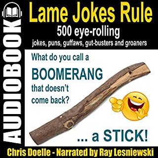 Lame Jokes Rule, Volume 1 audiobook cover art