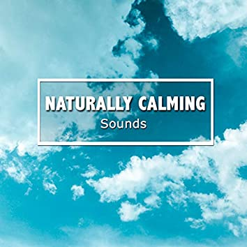 #19 Naturally Calming Sounds for Meditation
