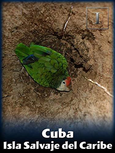 Cuba - Isla Salvaje del Caribe