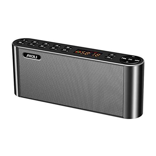 MYPNB Radio portátil, teléfono móvil del Altavoz de Bluetooth de Radio inalámbrica Ventilador insertado Subwoofer U Altavoz del Disco, for Caminar Que va de excursión (Color : C)