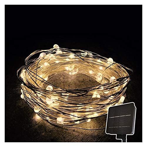 String Light Super Bright Solar Lights Outdoor Dairy Light for Christmas/Wedding/Party Indoor and Outdoor (Color : Warm, Size : 5m/16.4ft)