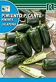 Semilla Pimiento Picante Jalapeño - Rocalba