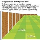 Zoom IMG-1 evergreen miracle gro semi per