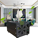 GHDE& Ozonizzatore 40000MG/h Generatore di ozono Home Generatore di Ozono Industriale purificatore d'Aria con Timer per camere Hotel, Automobili, Animali Domestici, Fumo e Fatto