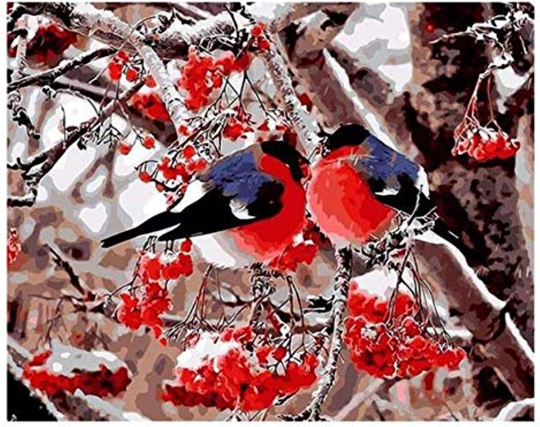descuento de ventas en línea UPUPUPUP UPUPUPUP UPUPUPUP Plum Blossom Birds DIY Pintura por números Rama Abstracta Pintura al óleo sobre Lienzo Acrílico Arte de la Parojo Nieve, Tworidc5-50X70Cm Sin Marco  ganancia cero