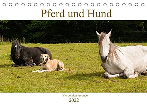 Pferd und Hund - Vierbeinige Freunde (Tischkalender 2022 DIN A5 quer)