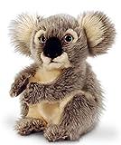 Peluche de koala, Keel Toys, peluche sentado, aprox. 20cm