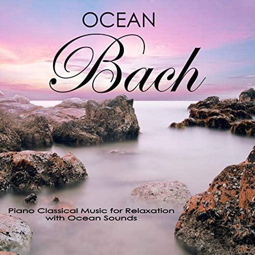 Ocean Sounds Academy, Nature Sounds Academy & Einstein Nature Sounds Academy
