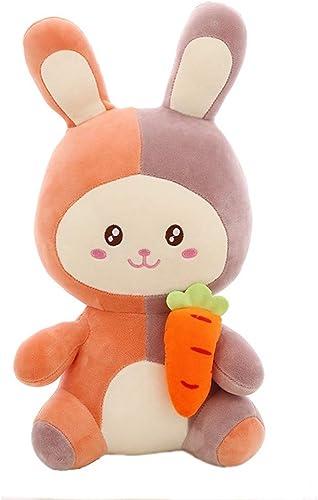 100% garantía genuina de contador LAIBAERDAN Conejo De Peluche Peluche Peluche Juguete niña muñeca Almohada Dos Colors muñeca muñeca Juguetes para Niños, 60Cm  aquí tiene la última