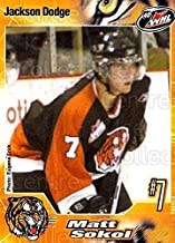 (CI) Matt Sokol Hockey Card 2005-06 Medicine Hat Tigers 21 Matt Sokol