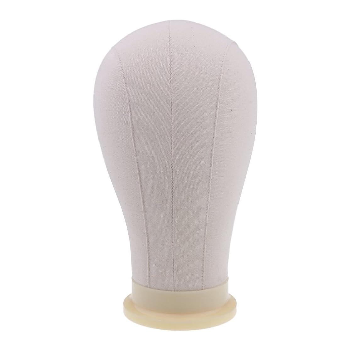 露出度の高いダウン手術Toygogo マネキンヘッド ディスプレイ 頭部モデル かつら 帽子 メガネ 展示 ホルダー 4サイズ - 23インチ