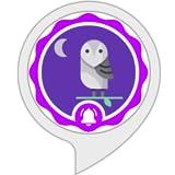 Owl Sounds Alarm