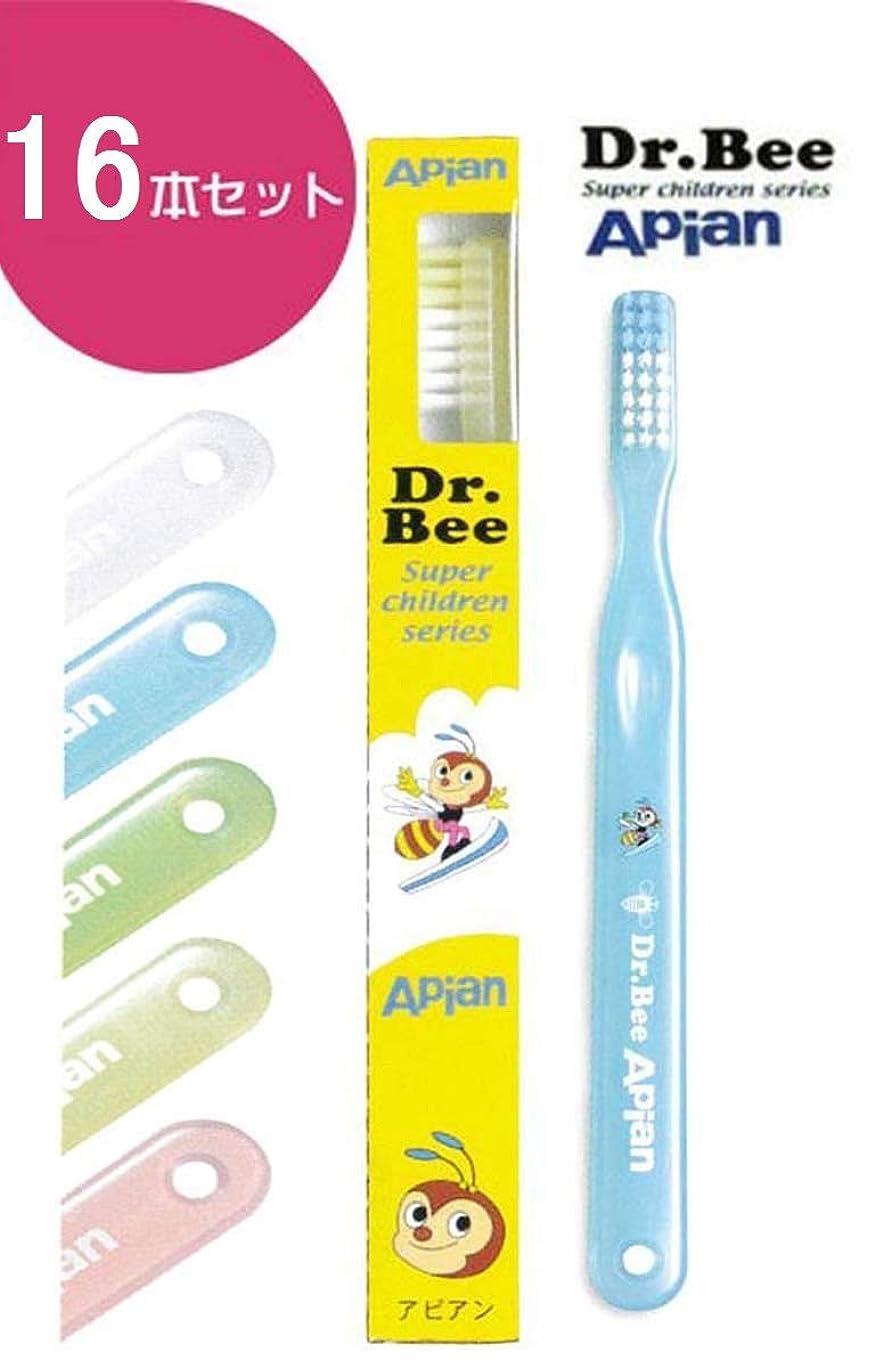 パッチラケット男らしさビーブランド ドクタービー(Dr.Bee) アピアン(Apian) 16本