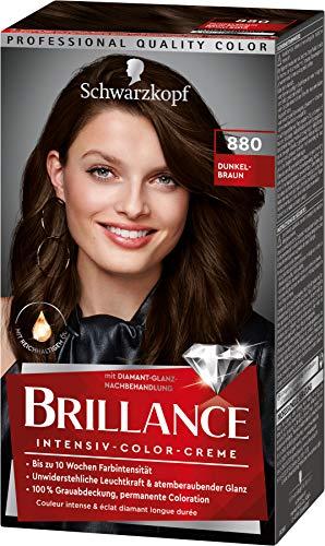 Brillance Intensiv-Color-Creme Haarfarbe 880 Dunkelbraun Stufe 3, 3er Pack(3 x 160 ml)