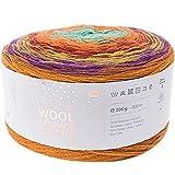 Rico Creative Wool Degrade Super 6 - Ovillo de lana con degradado de color para ganchillo y punto