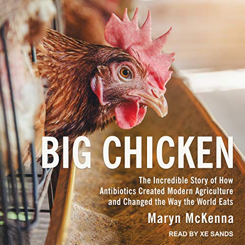Big Chicken cover art