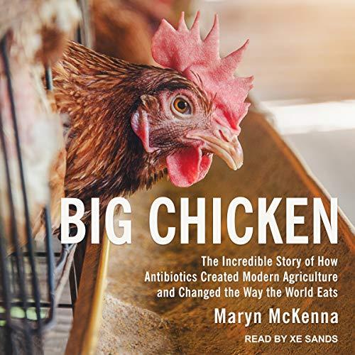 Big Chicken Titelbild