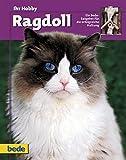 Ragdoll, Ihr Hobby