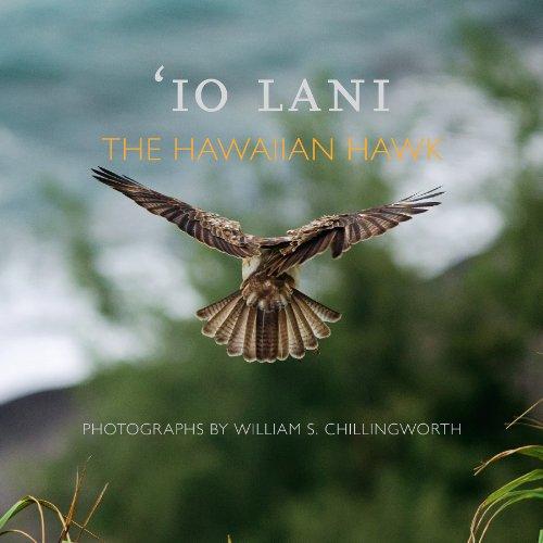 Culliney, J: Io Lani: The Hawaiian Hawk