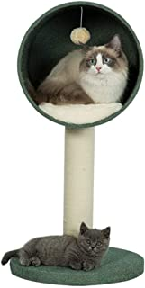 Amazon.es: Stronghold gatos