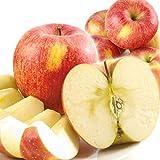 国華園 食品 りんご 青森産 ご家庭用 サンふじ 10kg 1箱 国華園