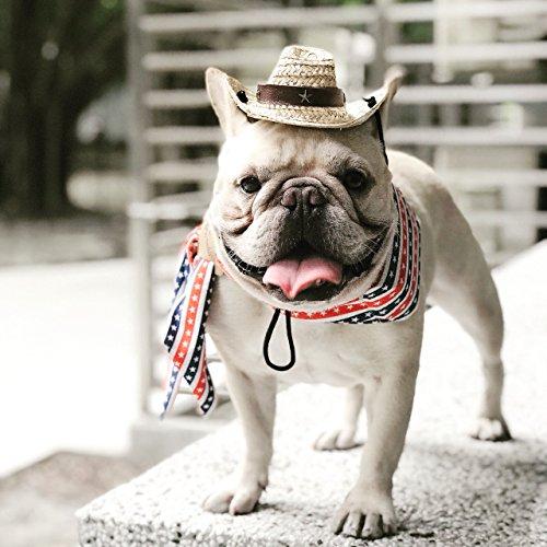 Frenchie(フレンチ―) ペット暑さ対策グッズひんやりクール 手作りネックバンダナ犬服 (アメリカンスター)