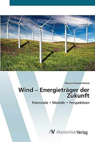 Preisvergleich Produktbild Wind Energieträger der Zukunft: Potenziale Modelle Perspektiven