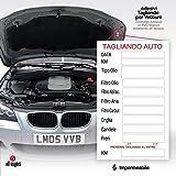 2AINTIMO Adesivi Etichette PVC tagliando Auto generici per Auto Olio Freni Candele Aria Cinghie (10)