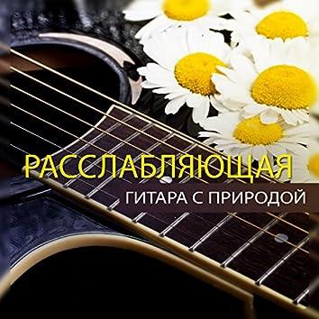Расслабляющая гитара с природой: Потрясающая музыка, Красивый оазис, День гармонии
