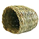 Small Pet Toy Natures First Grassy Nest
